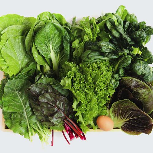 유기농 모듬 쌈채소 (800g/1kg)